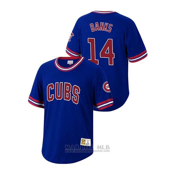 Maillot Baseball Homme Chicago Cubs Ernie Banks Cooperstown Collection Bleu